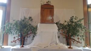 Altar of Repose 1